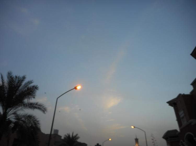 Photo 3  (13)